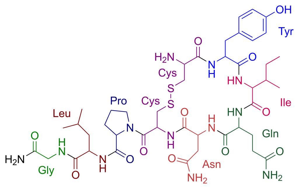 Oxytocin Molecule Oxytocin can enhance health