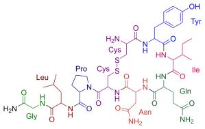 Oxytocin_color.svg